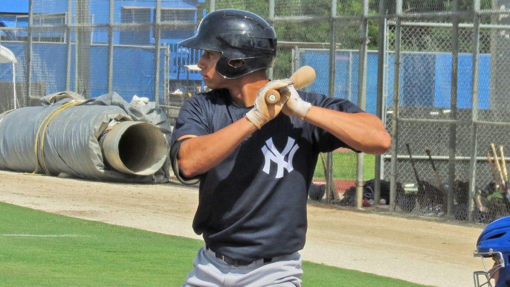 Dominic Jose Yankees Prospect